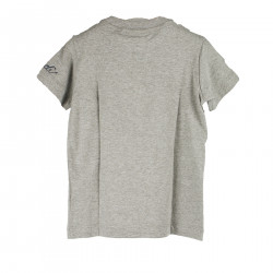 GRAY T SHIRT WITH FANTASY