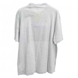 GREY T SHIRT WITH FRONTAL PRINT