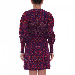 VIOLET RED AND GOLD DRESS
